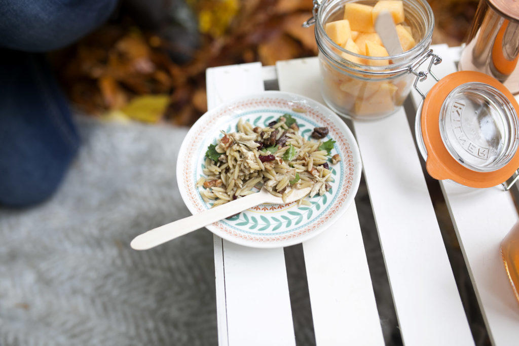 fall orzo chicken salad with cranberries